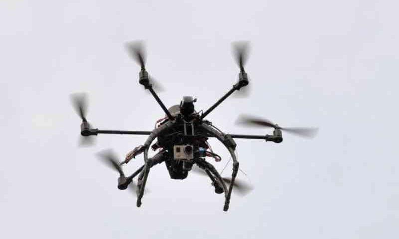 Joinville (SC) tem proposta para uso de drones na fiscalização de maus-tratos de animais