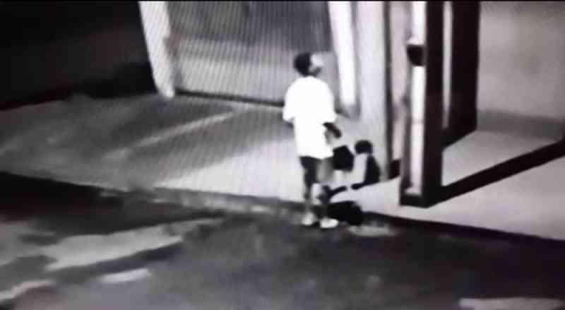 Homem é flagrado abandonando cachorro após amarrar animal em poste; vídeo
