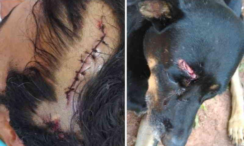 Morador de rua e seu cão sofrem agressões enquanto dormiam em Araras, SP