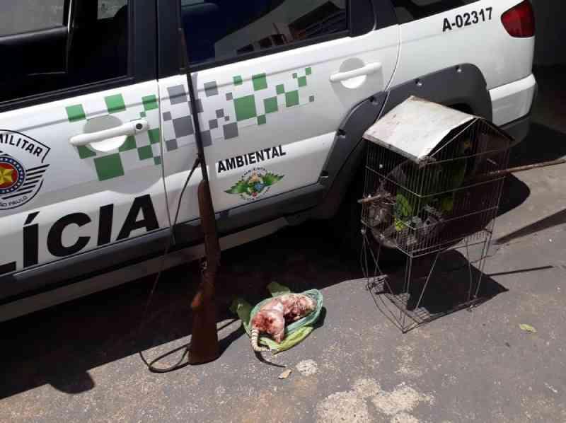 Aves, arma de fogo e tatu abatido são apreendidos pela Polícia Ambiental em Pacaembu, SP