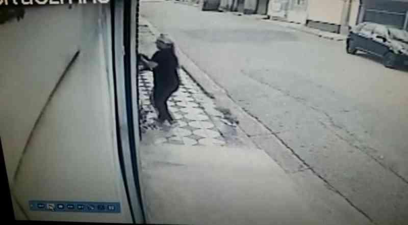 Mulher abandona filhote de cachorro em casa desocupada em Sorocaba, SP; vídeo