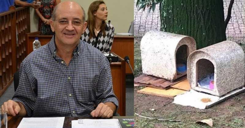 Vereador propõe retirada das casinhas de animais do Lago Municipal de Araras, SP, para 'tornar cartão postal ainda mais atraente'