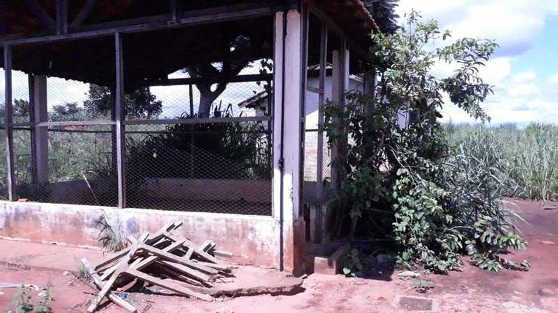 MP pede que abrigo de cães passe por reforma em Auriflama — Foto: Reprodução/Facebook