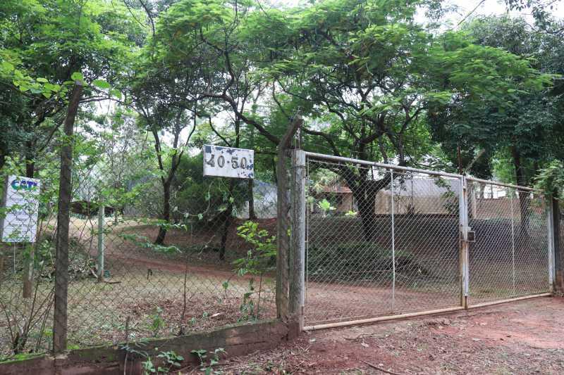 Bauru (SP) terá centro de reabilitação para atender animais domésticos