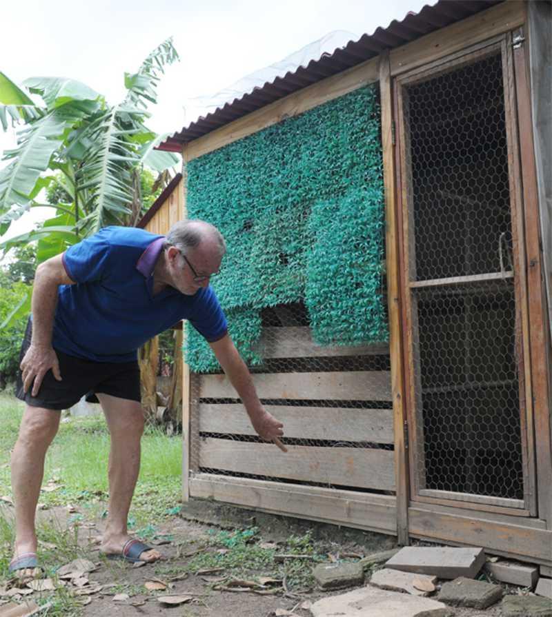 Estrangulamento e decapitação de aves intriga Vale das Garças, em Campinas, SP