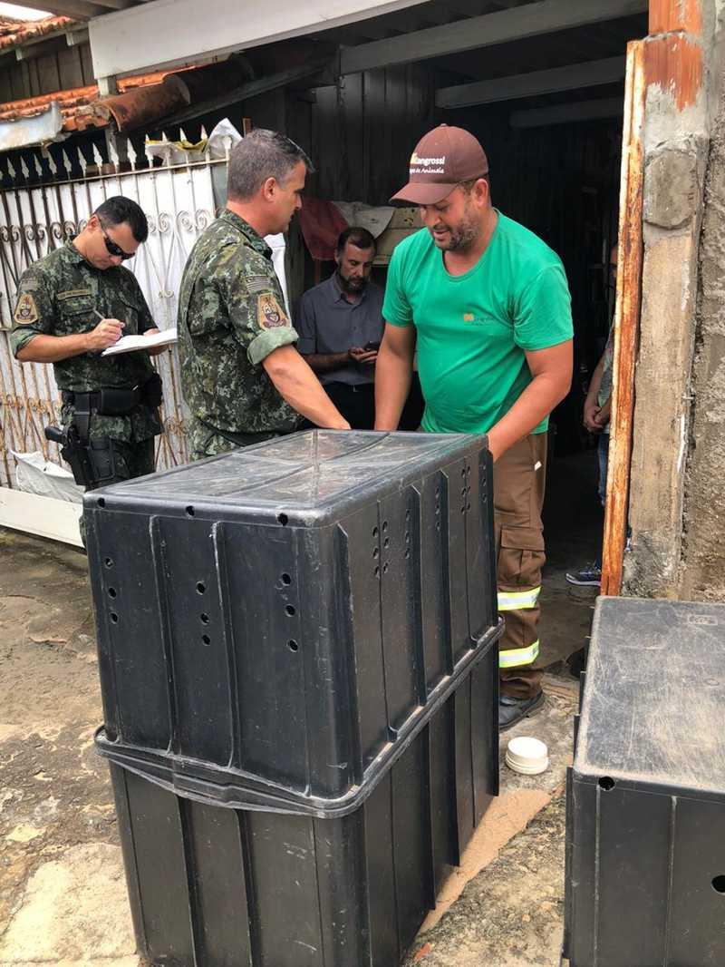 Resgate mobilizou empresa, prefeitura e Polícia Ambiental de Marília — Foto: Prefeitura de Marília/Divulgação