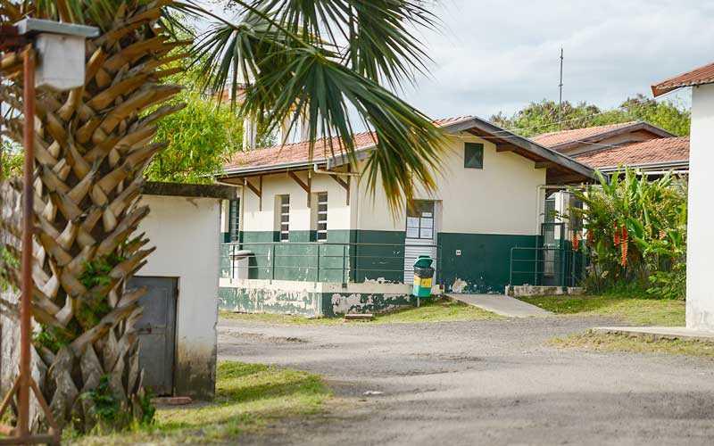 Sindicância investiga tentativa de envenenamento no canil municipal de Piracicaba, SP