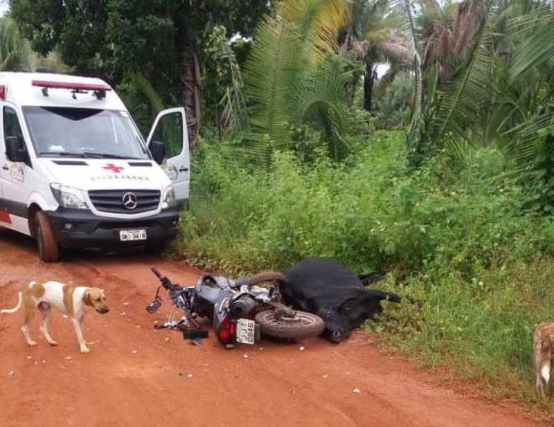 Boi é sacrificado após ser atropelado por motociclista na zona rural de Tocantinópolis, TO