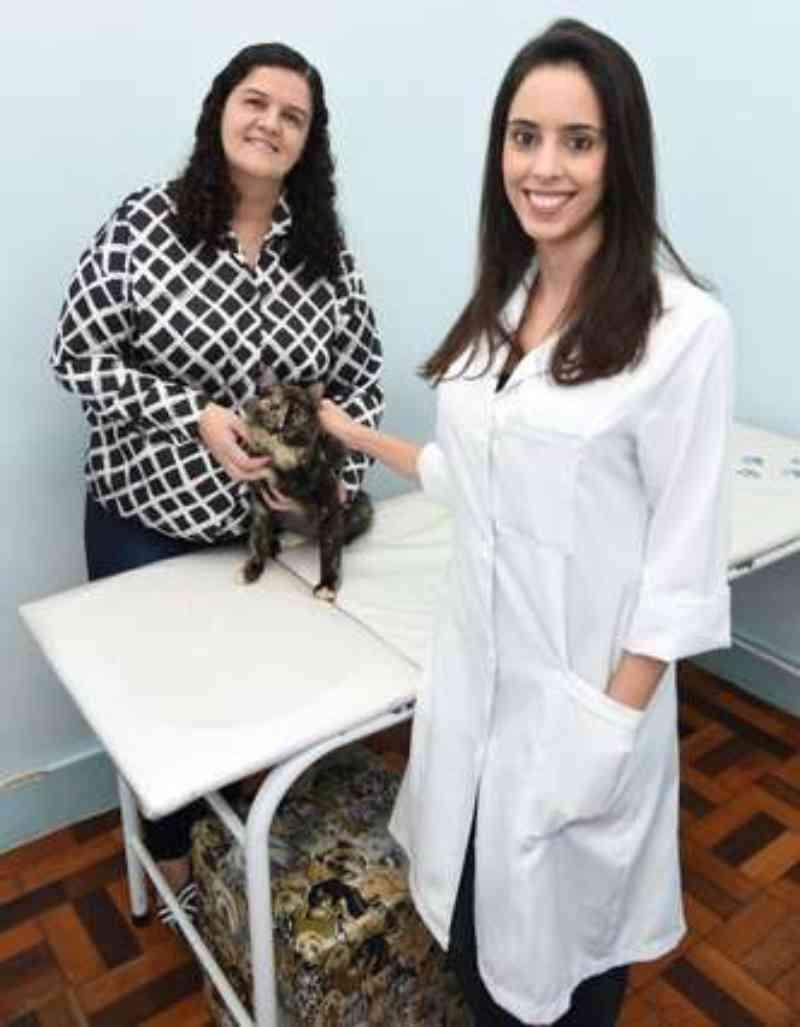 Tratamento com células-tronco ajuda animais a se recuperarem de doenças graves