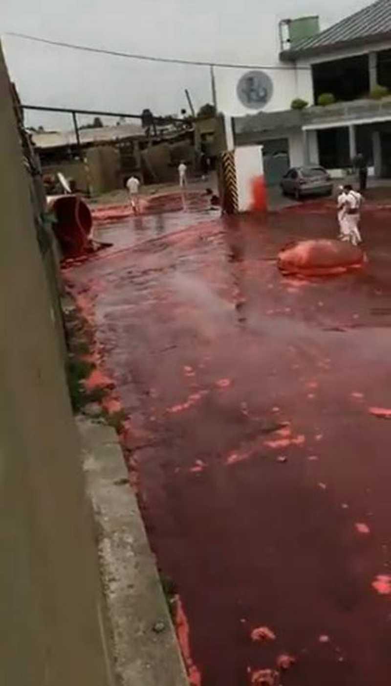 Argentina: 500 mil litros de sangue vazam de matadouro. Foto: Reprodução/Twitter(Darío Albano)