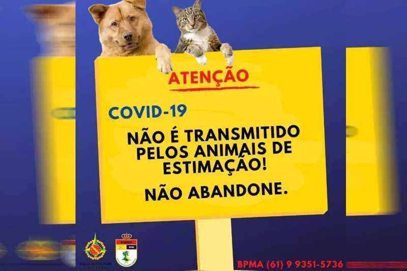 Polícia Militar do DF alerta para fake news e pede: não abandonem os animais