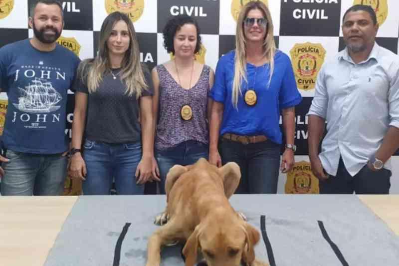 Vídeo: maltratado, cão devora ração comprada por policiais civis