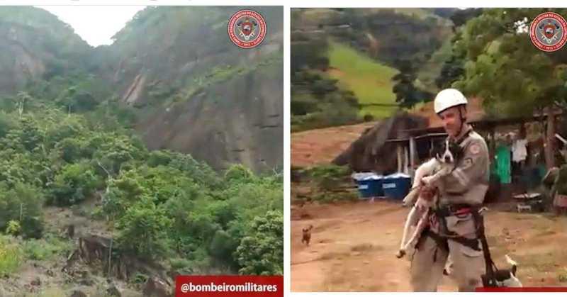 Bombeiro escala montanha e resgata cão que ficou sem comer e beber por 4 dias em Ibiraçu, ES; vídeo