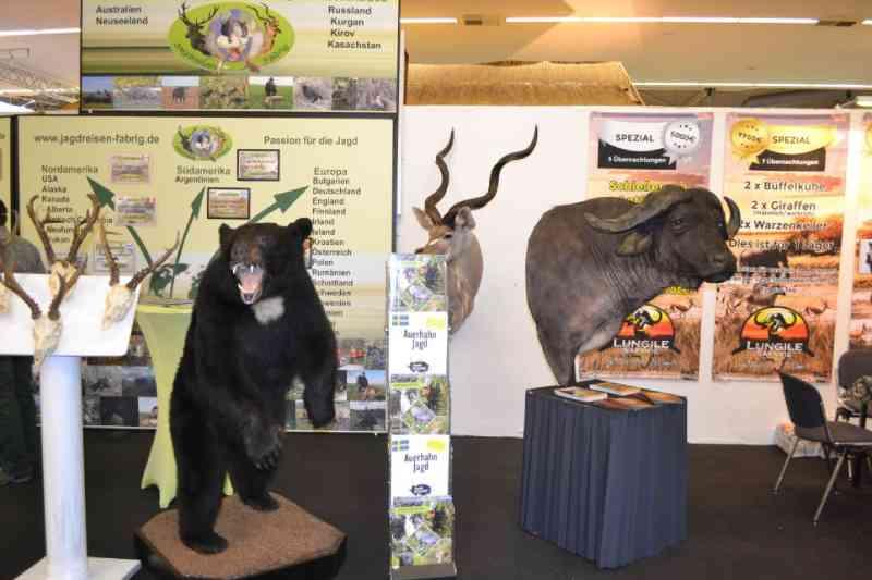 Por dentro da maior feira de troféus de caça da Europa que oferece ofertas de viagem para matança 'fácil' de animais
