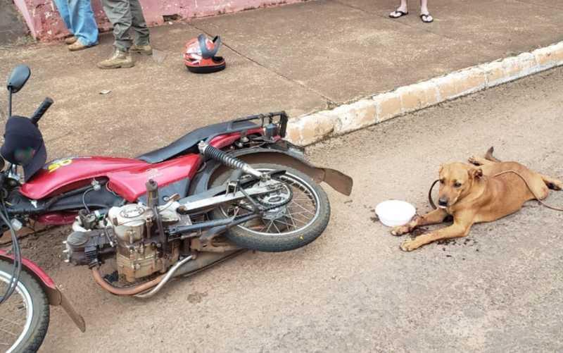 Idoso é preso após ser visto arrastando cadela amarrada a moto em Jataí, Goiás — Foto: Reprodução/ TV Anhanguera