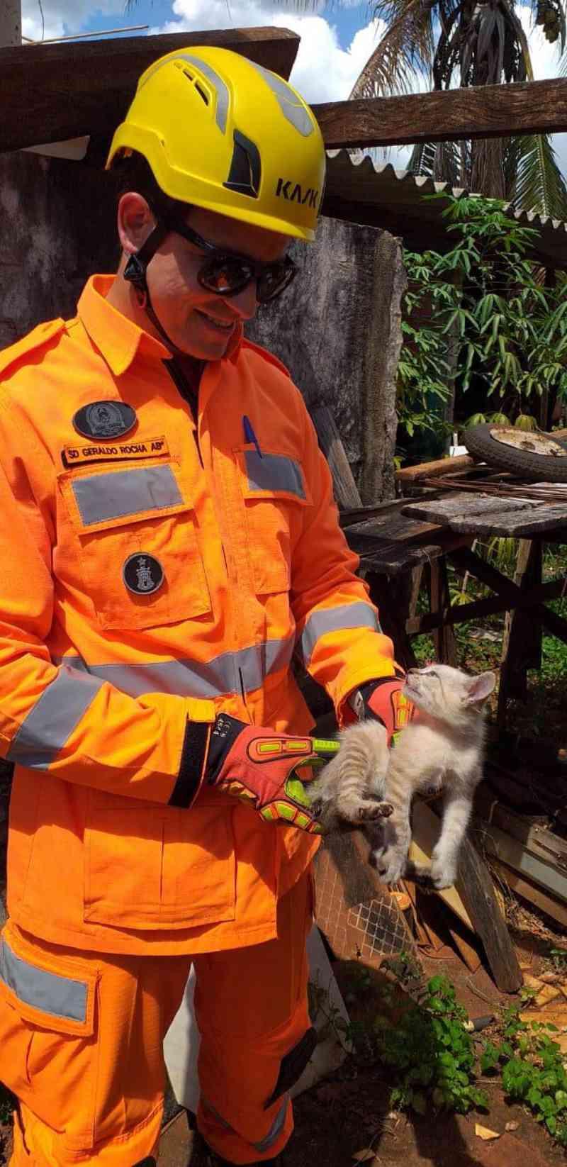 Gato fica preso entre muros no Marta Helena, em Ituiutaba, e é salvo pelos bombeiros