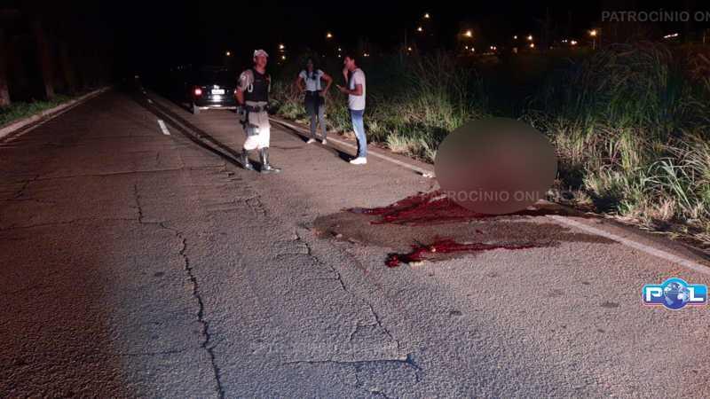 Veículo atropela cavalo na AMG 1815, zona urbana de Monte Carmelo, MG
