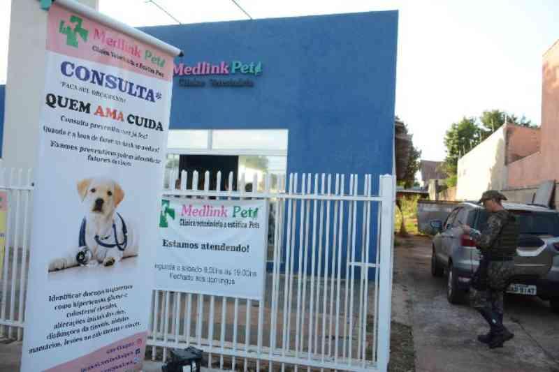 Clínica veterinária clandestina tinha cães mortos e medicamentos vencidos