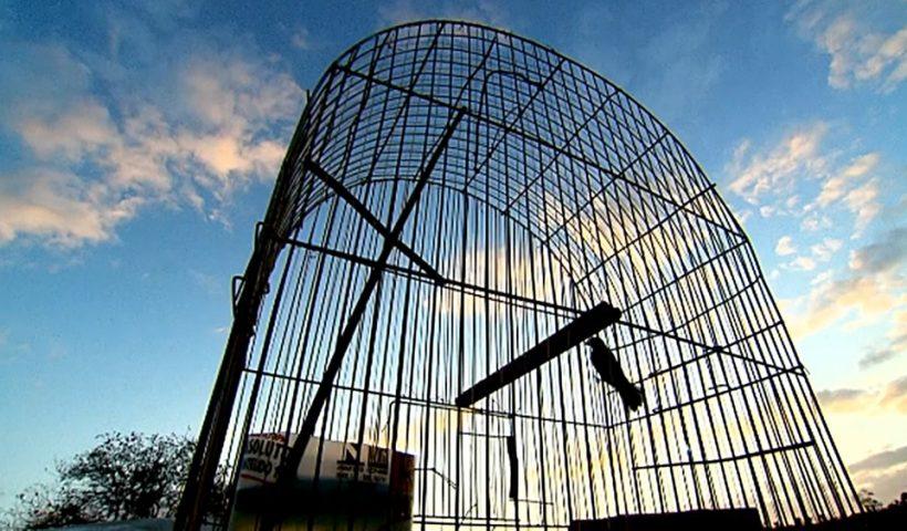TRF5 certifica trânsito em julgado em condenação de paraibano 'maior traficante de animais do país'
