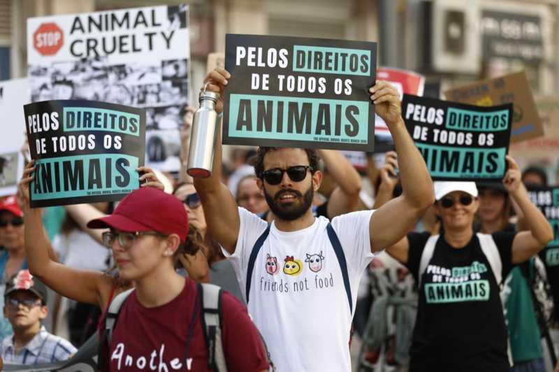 Activistas de direitos animais detidos pela polícia por se acorrentarem frente ao parlamento português