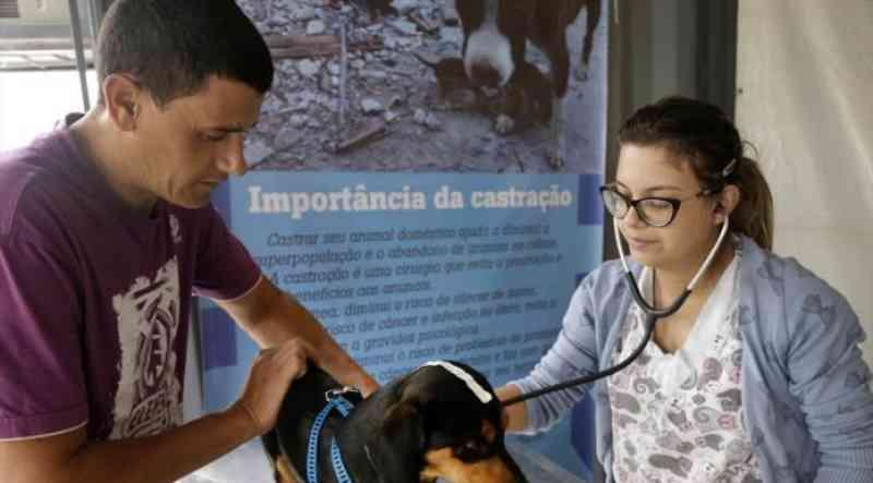 Prefeitura de Curitiba (PR) abre mais 2,5 mil vagas para castração de cães e gatos