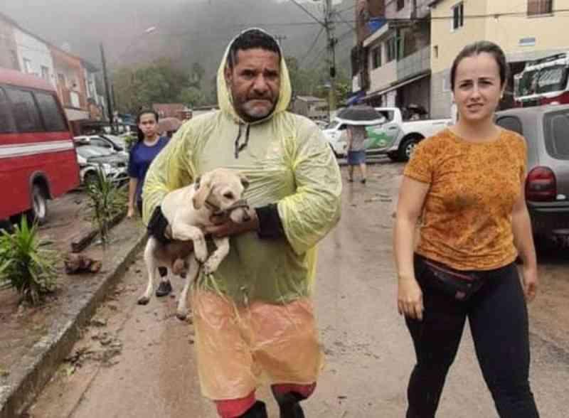História do cachorro que ajudou a encontrar corpo do tutor soterrado no Guarujá (SP) comove a internet