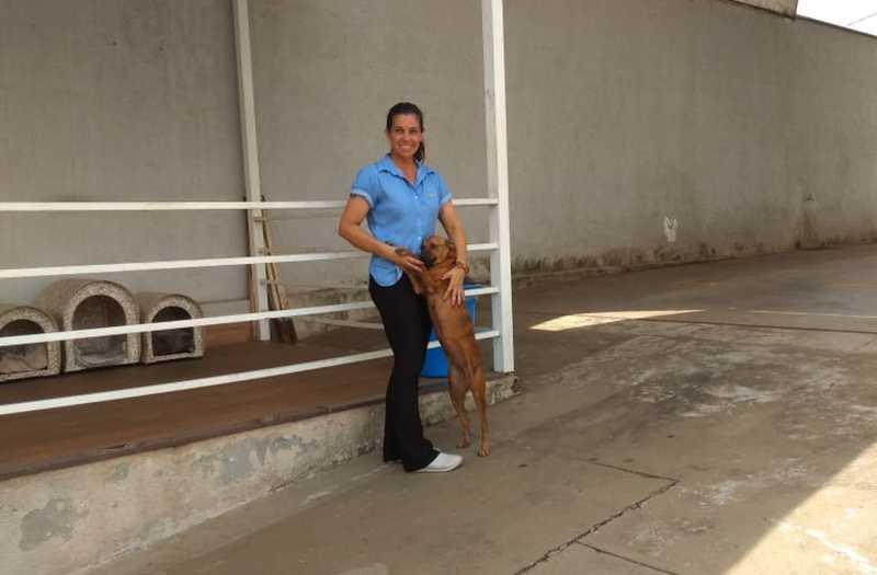 Frentista Carol Simas diz que foi 'paixão à primeira vista' com o cão Toddy — Foto: Arquivo Pessoal