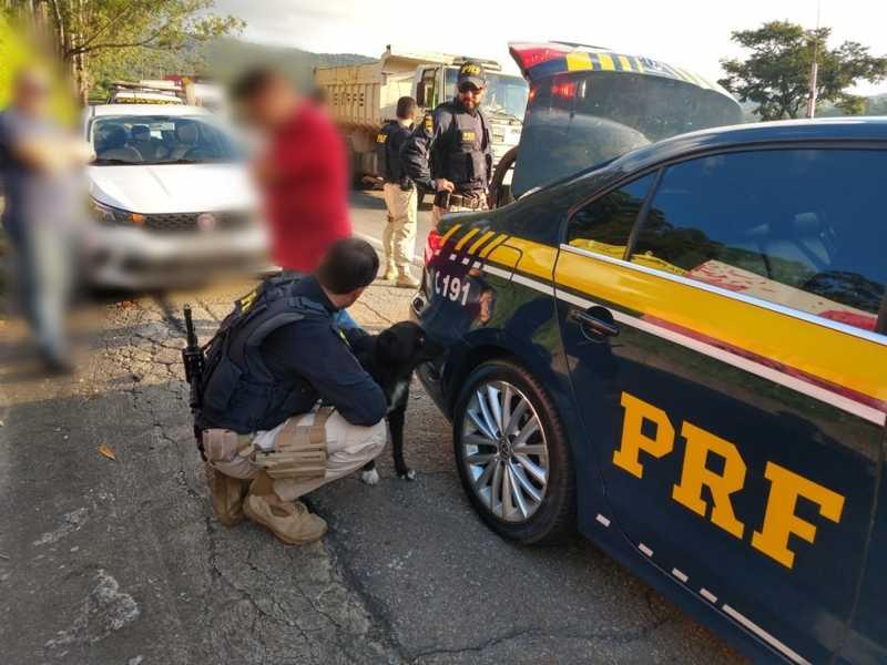 Cachorro abandonado em rodovia é resgatado pela PRF e tutor é preso