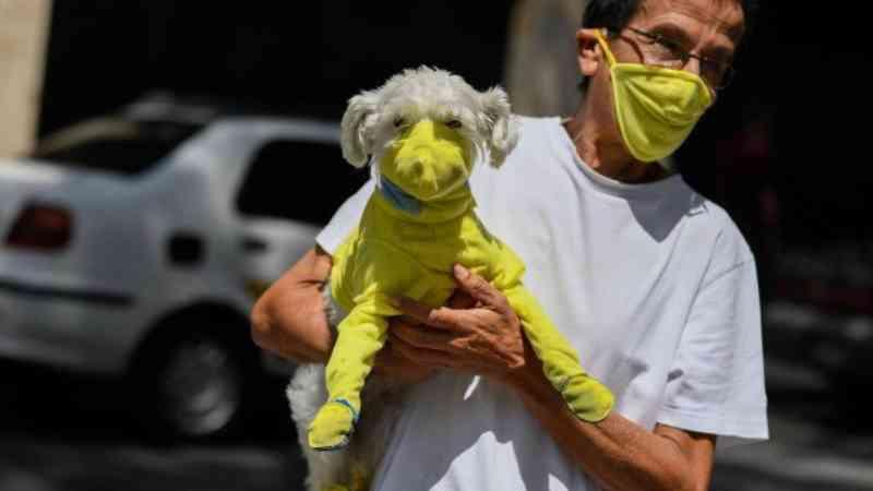 Número de adoções de animais cresce nos EUA com a pandemia do coronavírus e o isolamento social
