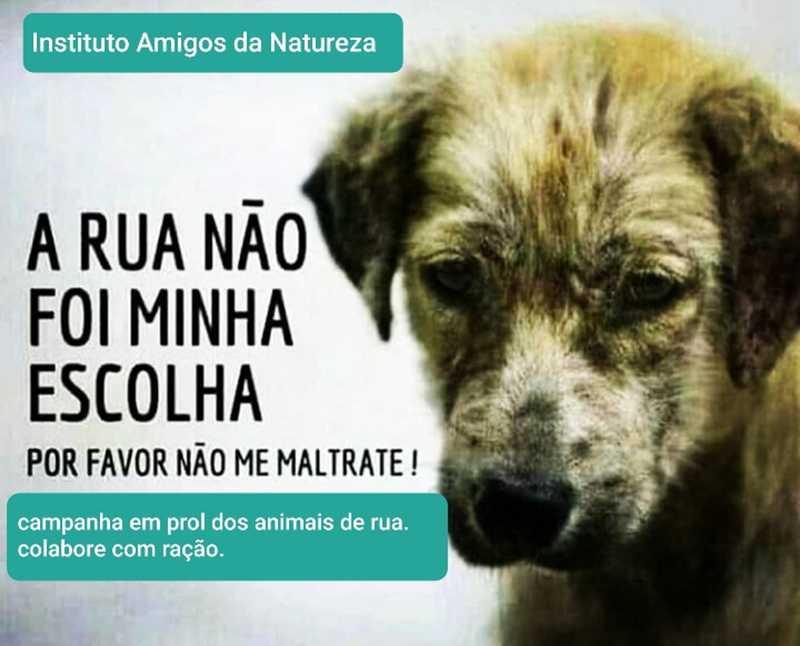 ONG realiza campanha arrecadando ração para animais de rua em Alagoas — Foto: Marcos Lima/Inan