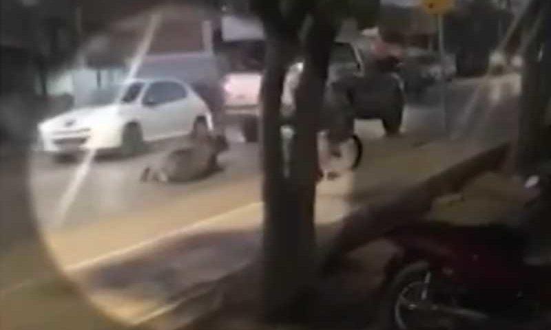 Homem é preso suspeito de matar cavalo a pauladas no sudoeste da Bahia