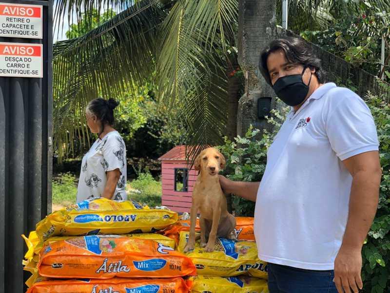 Organização cadastra protetores de animais de Fortaleza (CE) para distribuir doação de cinco toneladas de ração para cães e gatos