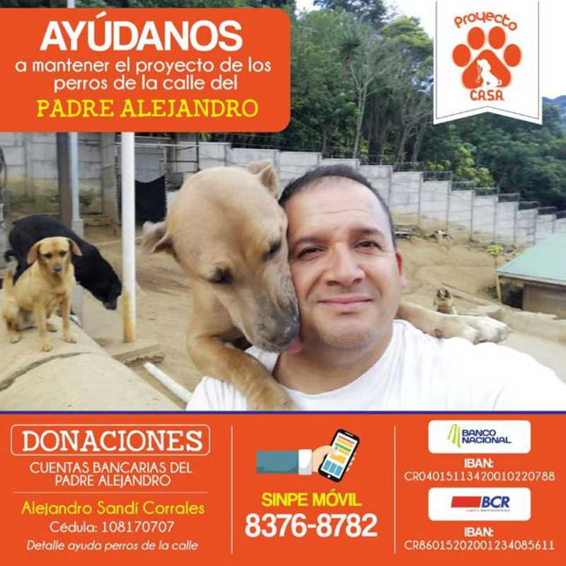 Sacerdote resgatou mais de 100 cães abandonados na Costa Rica