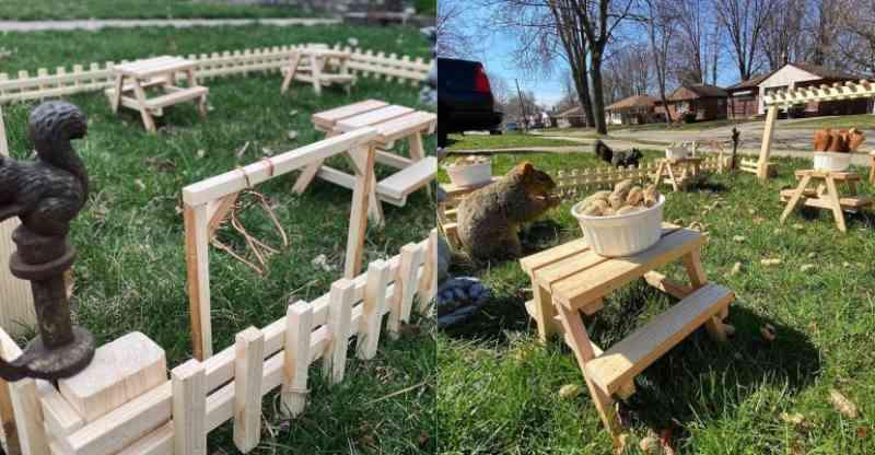 Homem cria restaurante no quintal de casa para alimentar animais durante a quarentena