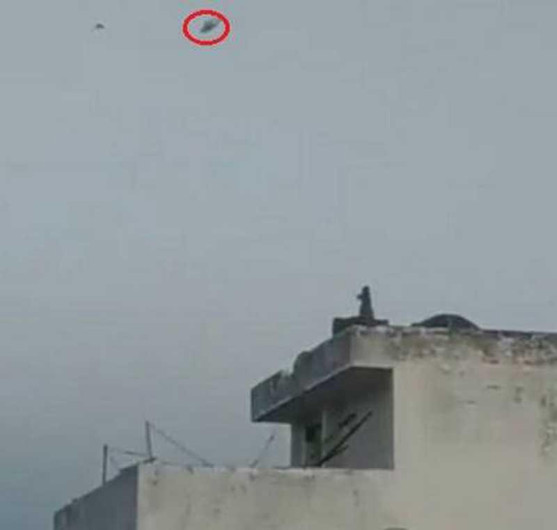 Macaco solta pipa no alto de casa na Índia Foto: Reprodução/Twitter