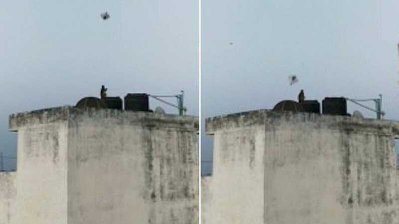 Macaco é visto soltando pipa durante a quarentena na Índia