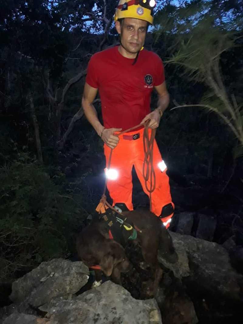 Cachorro fica preso em buraco com cerca de 15 metros por quatro dias e bombeiros fazem rapel para resgatá-lo