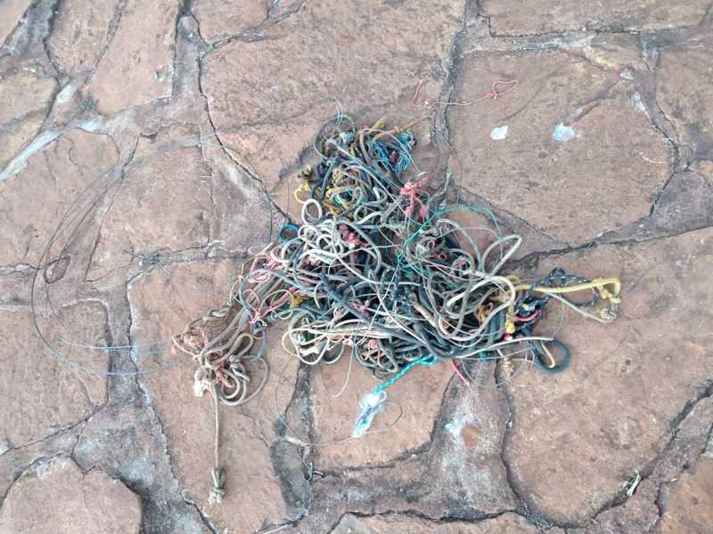 Polícia ambiental flagra armadilhas em santuário ecológico e reforça fiscalização em Uberaba, MG