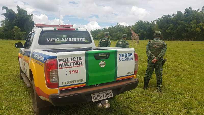 Reserva ambiental em Ube — Foto: Polícia Militar de Meio Ambiente/Divulgação