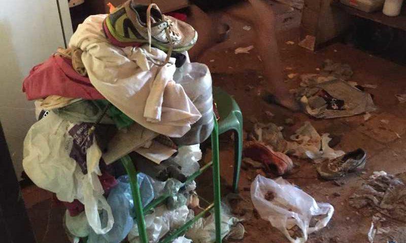 Animais estavam abandonados em casa — Foto: Projeto Lunaar