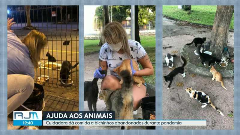 Cuidadora alimenta animais abandonados no Rio durante a pandemia