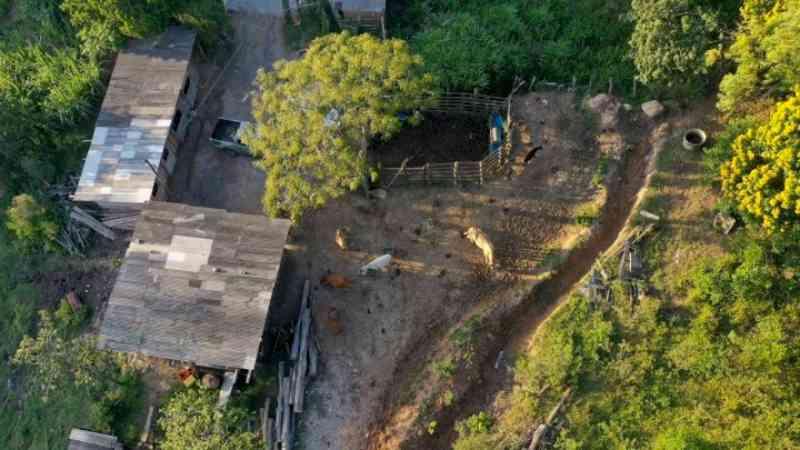 Municípios de Santa Catarina registram menor número de casos de farra do boi