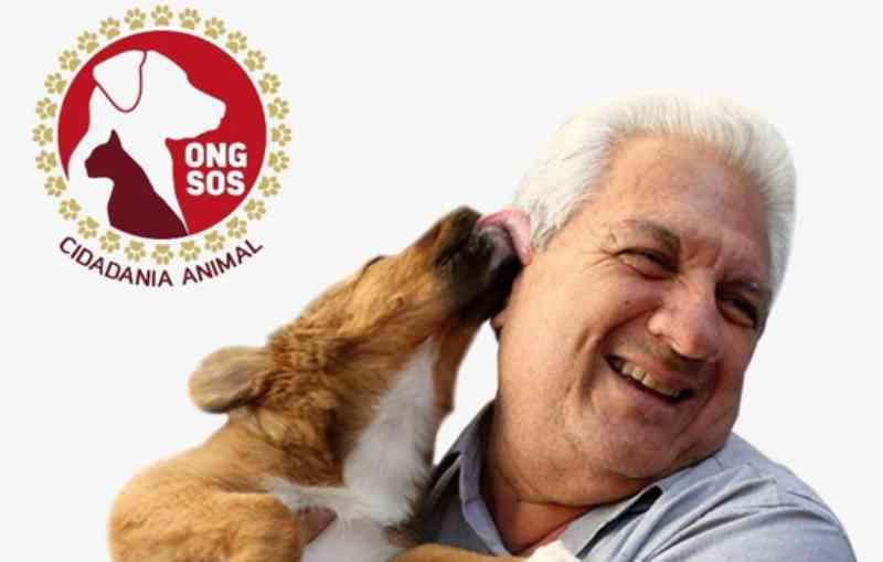 Em São Caetano, ONG SOS Cidadania Animal mantém atendimento aos animais