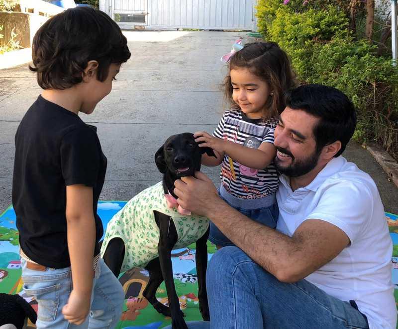 Família adota cadela durante isolamento social e dá nome de Quarentena