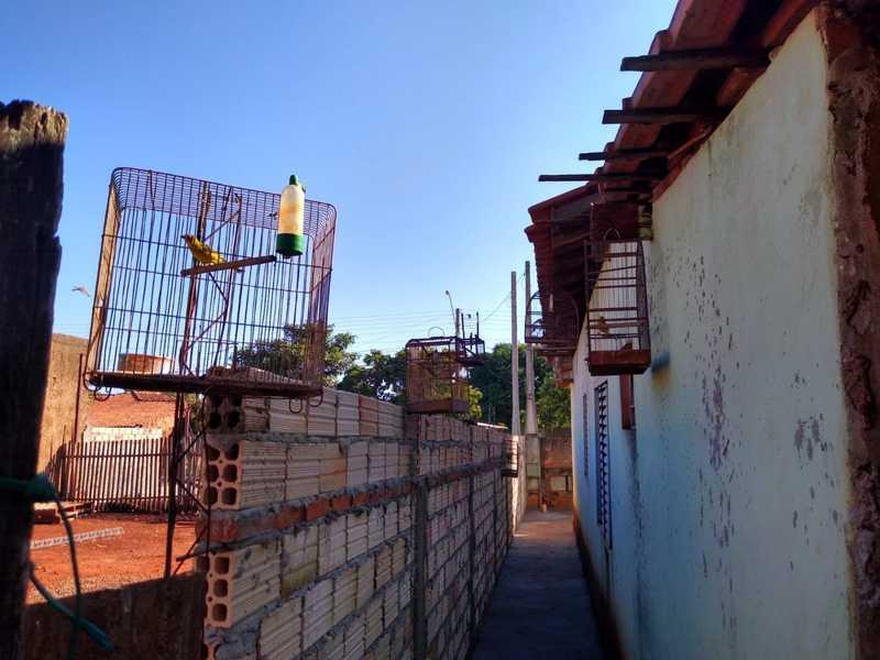 Equipe localizou 66 pássaros nativos dentro de gaiolas em um imóvel no Parque das Nações — Foto: Polícia Ambiental/Divulgação
