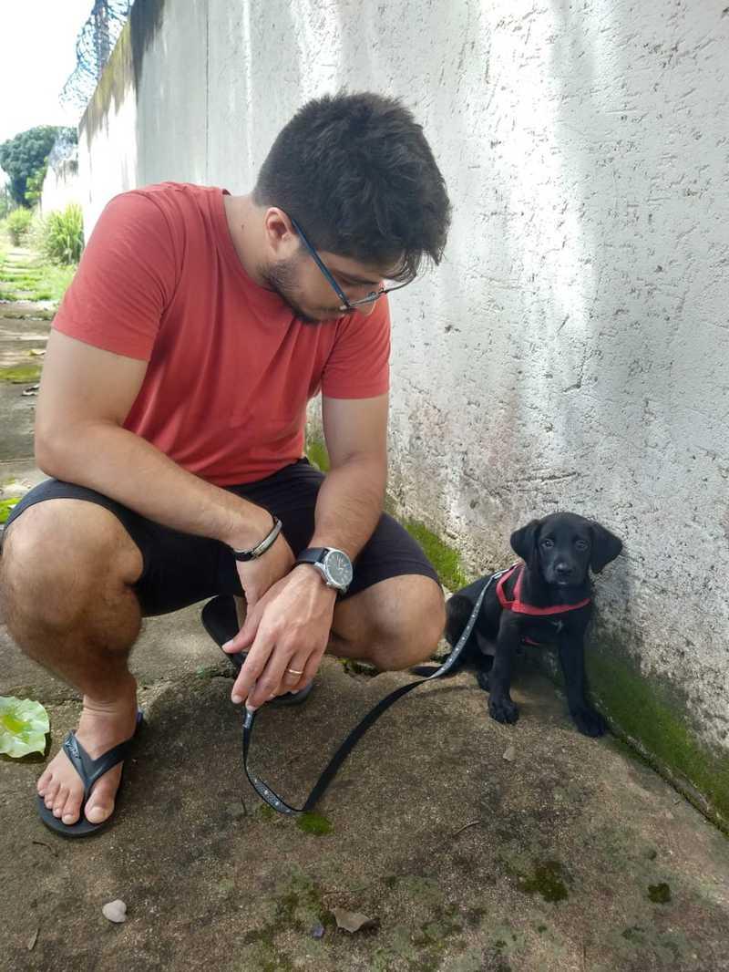 Cachorro é resgatado de bueiro durante forte chuva após três dias preso na tubulação: 'Nasceu de novo'