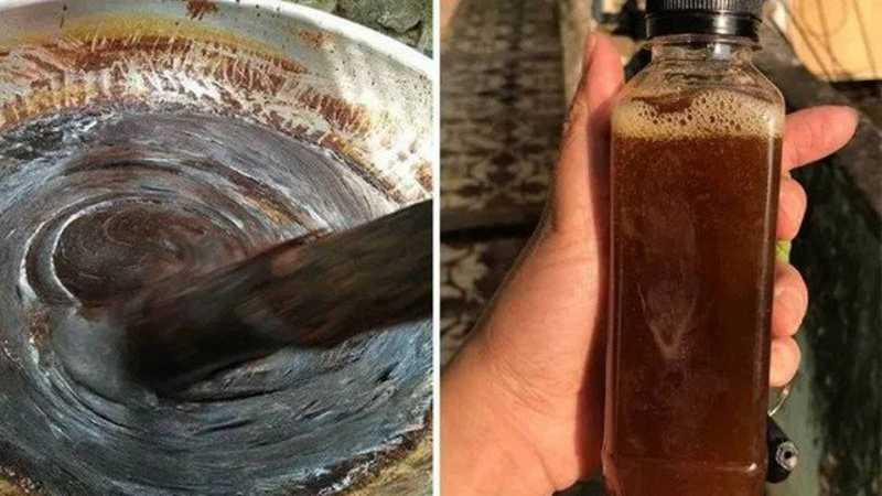 Pasta feita de gato preto é vendida como bizarra 'cura' para coronavírus no Vietnã