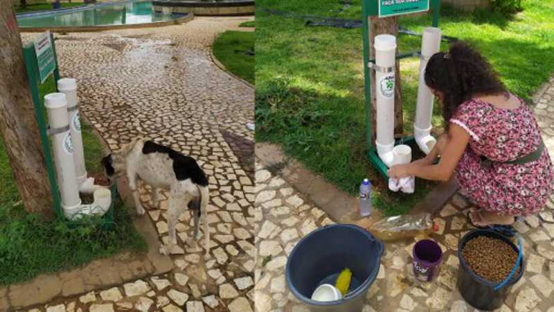 Diana faz a manutenção de comedouros e bebedouros da cidade com as doações recebidas.