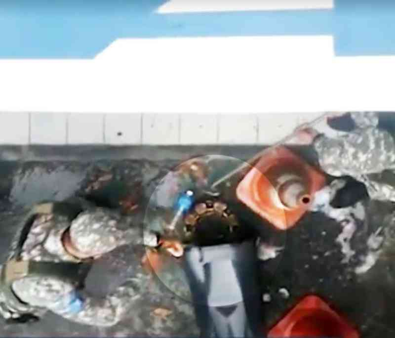 Com chuvas e ruas alagadas, cobras aparecem e são resgatadas em diversos pontos de Salvador, BA