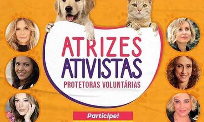 Atrizes se unem para ajudar animais carentes durante a pandemia